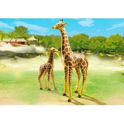 Žirafa s mládětem