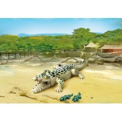 Krokodýl s mláďaty
